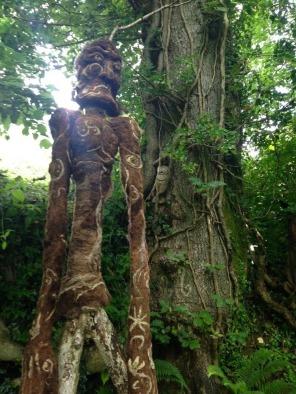 darcy tree spirit crop