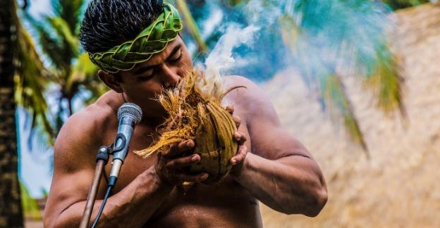 polynesian culture center thin