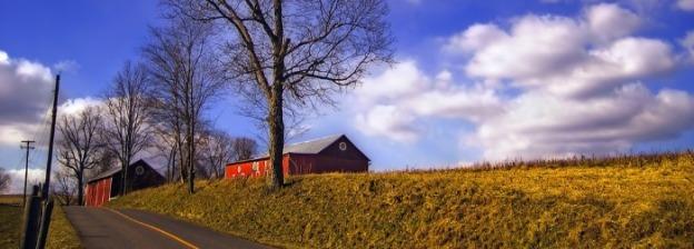 Tonelli PD barn distance thin